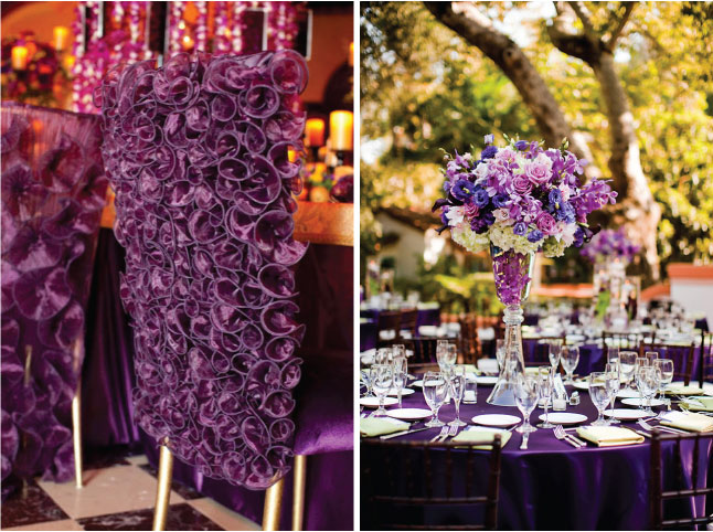 nappe-violette