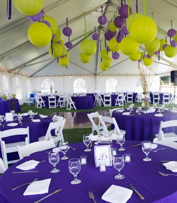 decor-tentes-nappes-vertes-violettes