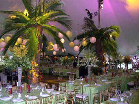 vrais-palmier-tenture