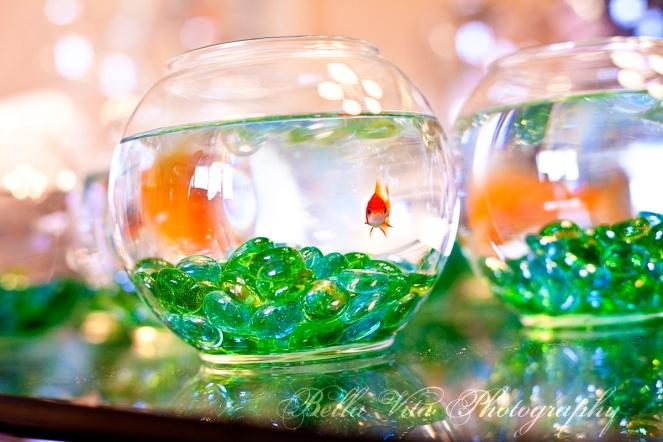 poisson-cenrte-table