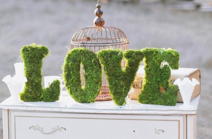 decor-love-mousse