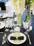 centr-table-noir-raye