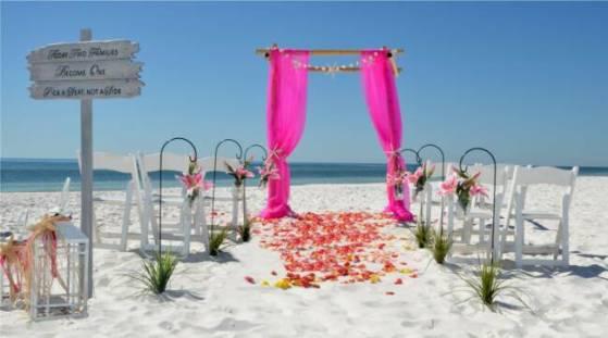ceremonie-fushia-verte