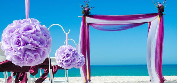ceremonie-violette-mauve